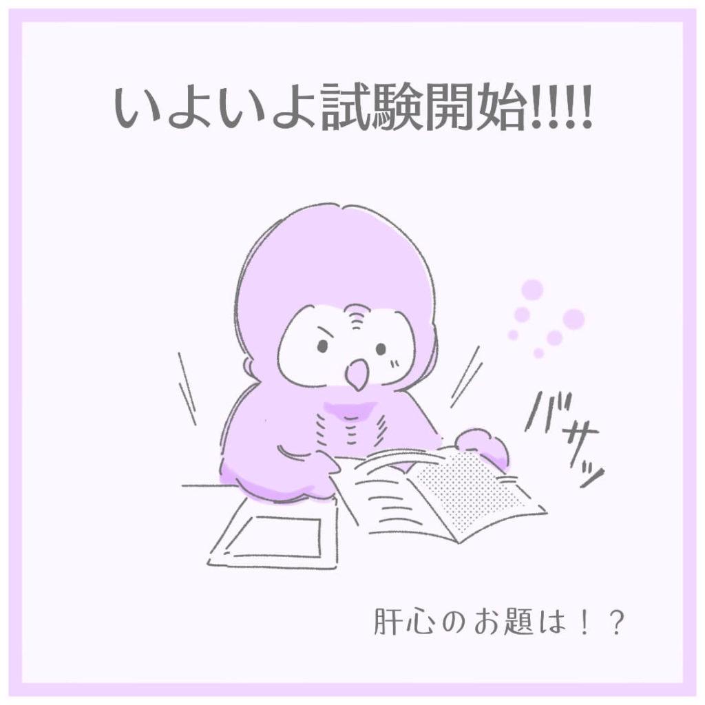いよいよ試験開始!!!!