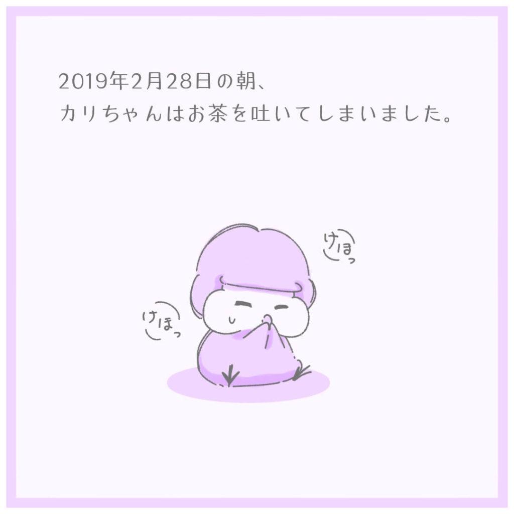 2019年2月28日の朝、カリちゃんはお茶を吐いてしまいました。