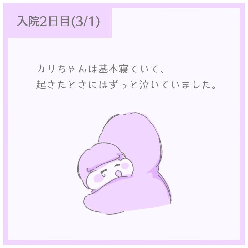 カリちゃんは基本寝ていて、起きたときにはずっと泣いていました。